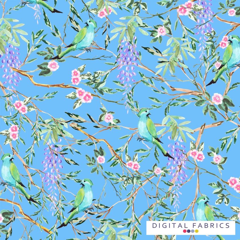 DF_Spring Birds